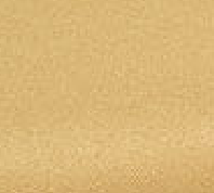 GoldCloth